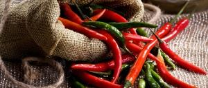 festival-da-pimenta